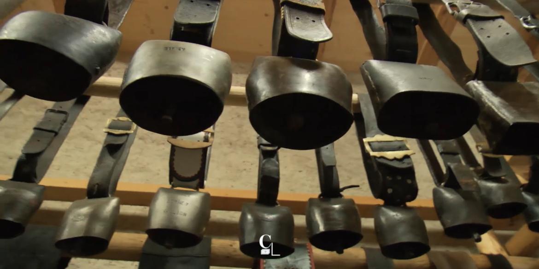 Maison de la cloche : reportage de Couleurs Locales (RTS)
